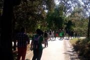Caminhada pela Preservação e Promoção da Floresta Autóctone