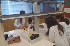 Clube das Ciências 1